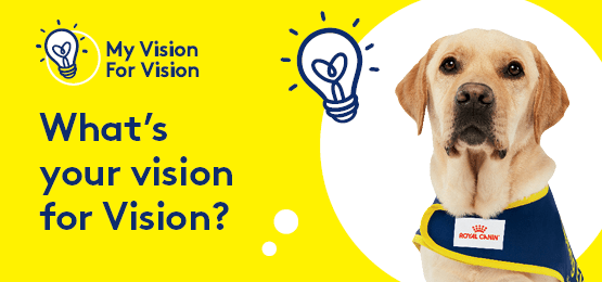 What's your vision for Vision? Golden Labrador Seeing Eye Dog. Text: My Vision for Vision